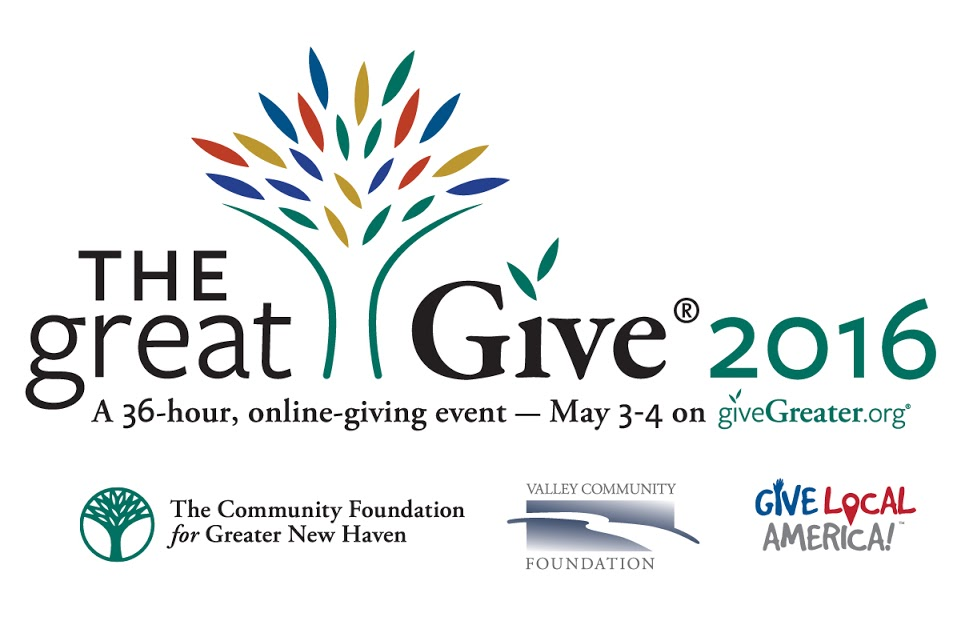 Online-GreatGive2016-Horizontal_With_Sponsors